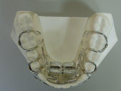 SH下顎400