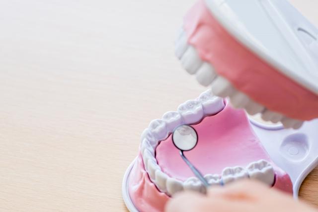 気付かないうちに進行する歯周病!その怖さとは?
